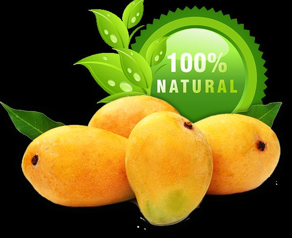 Buy best alphonso mangoes online