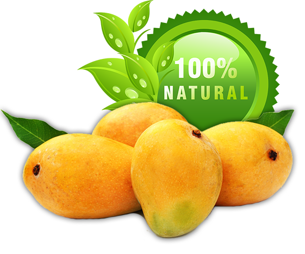 Buy best alphonso mangoes online