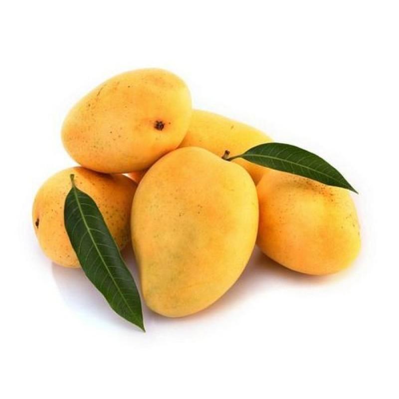 Alphonso Mango Shopping