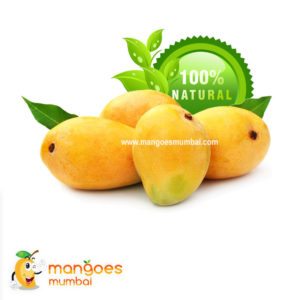 Half Dozen Premium (Size A+) Ratnagiri Alphonso Mangoes (6 Fruits)
